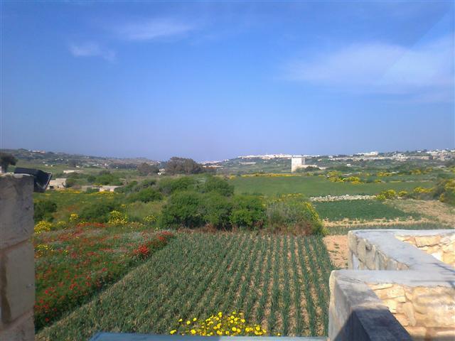 Farmhouse For Sale In Mtahleb Malta Pierre Faure Real